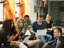 Career Learning and Employability in Denmark