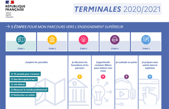 Terminales 2020-2021 website