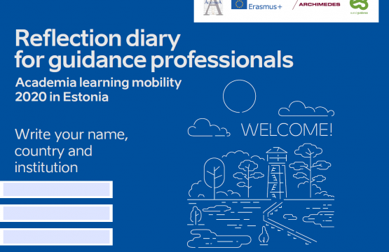 Reflection diary for virtual mobility