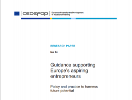 Guidance supporting Europe's aspiring entrepreneurs – Policy and practice to harness future potential