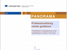 Professionalising career guidance: practitioner competences and qualification routes in Europe
