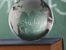 Studying abroad supports career success