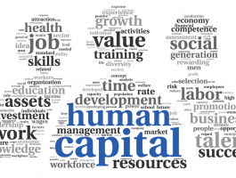 Human capital theory - The value and importance of people to organisational success