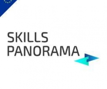 Making labour market and skills intelligence policy relevant