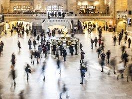 Developing careers through transversal competencies (EPALE article)